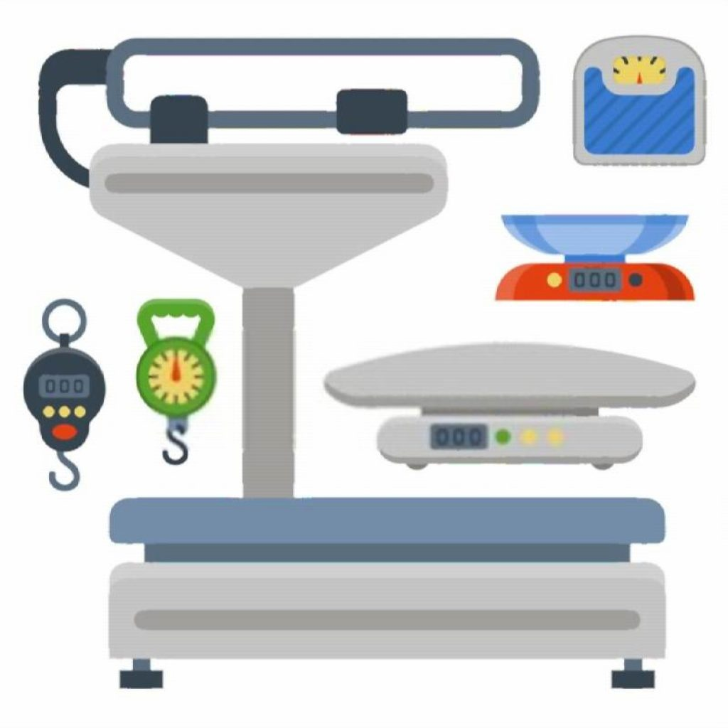 Best Weighing Machine for Kitchen